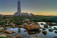 Visit Cape St. Francis