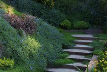Jardín Buin
