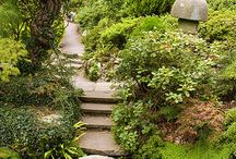 Gardens * * and outdoor ideas / by Valerie Carroll