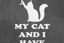 "my ""crazy cat lady side"""
