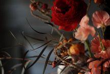 Flowers make a house a home