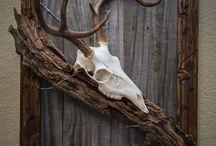 hunting / skull ideas