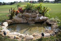 Cascades, ruisseaux et jeux d'eau pour des jardins acquatiques. / L'éveil des sens