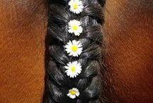 bloemen vlecht