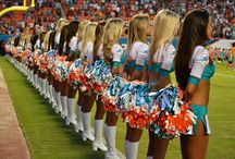 Miami dolphins  / by Amanda Eilers