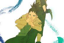 Mirai and Shikadai