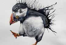 Pingviner, lunnafågel, svanar och ankor