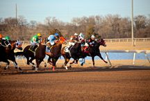 2015 Quarter Horse Season / The 2015 Quarter Horse Season at Remington Park. Join in on all the fun Oklahoma's ONLY horse racing track has to offer!