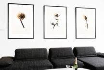 Danish Wall Art that's All The Buzz / We love these prints because they buzz with nostalgia and poetry, yet are super sophisticated in all their simplicity. They look amazing in modern as well as classic homes, and are surprisingly affordable. By Danish photographer duo Hagedornhagen.