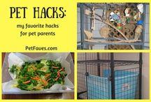 Pet Hacks and Tips