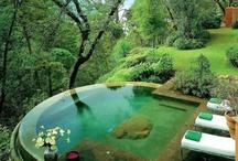 Ali's Oasis, AKA pool