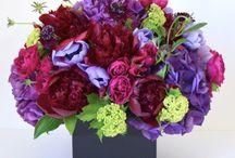 Hydrangea Flower Arrangements | NYC / https://www.gabrielawakeham.com