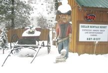 Things to do in the Winter / Enjoy Snowmobiling, Snowshoeing, Cross Country and Downhill Skiing and even Tubing right from your Cabin. Call 509-687-Tims (8467) or visit http://www.chelanrentals.com/reservations/ to reserve your Cabin.