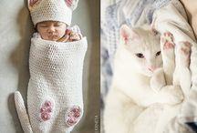 söta katter
