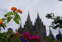 LDS Temples Photography / by Richard Mcclellan