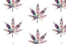 Smoke weed every day♂️