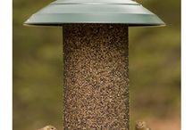 Thistle feeder, birds,