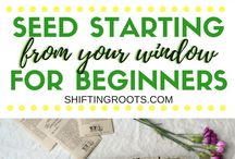 Gardening Tips and Ideas for Beginners