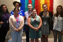 2016 Intern Diaries / In the museum and on the road with our summer interns.