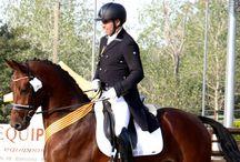 Actualidad Equitación