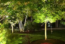 LED Landscape Lighting / Create drama, add interest and turn your nighttime yard into a stunning landscape with outdoor lighting.