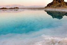 The dead sea / The Dead Sea