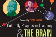 Teaching As Inquiry / 2016 *Cultural Responsiveness *ILP