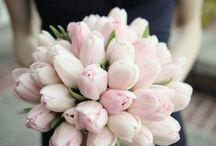 Ślub - bukiety / Bukiety z tulipanów