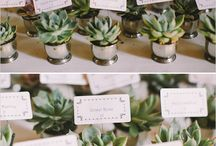 Wedding Favors & Gifts