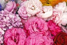 Colours // Farben