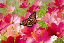 mariposas!