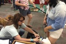 Wondercide at Pet Events / Wondercide wonderworkers doing wonderwork at various pet-centered events.