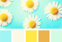 Colour / Inspirational colour palettes.