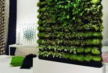 Green & Garden
