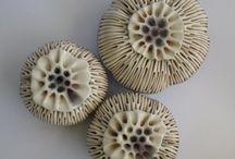 Bioceramik. Organic Pottery.