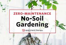 No soil gardening
