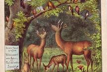 metsän eläimet