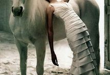 horse and fashion