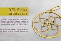 Delftia Facts
