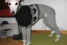 Koiran puvut / Dog Clothes