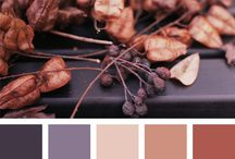 Mood board | Colour schemes