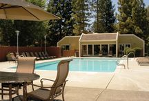 Santa Rosa apartments for rent / The best apartments to rent in Santa Rosa, CA!