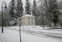 "Winter ""Wonder"" / by Pacific University"