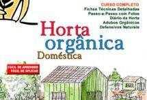 organicos e plantios