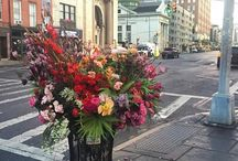 Flores em NY