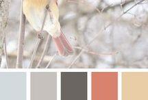 Kolory farb, wnętrza