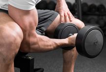 Exercise For Biceps