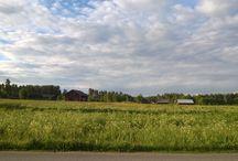 Landscapes (Lumia 920)