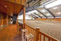 Argyle arena