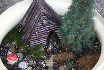 Fairy Gardens / by Marilyn DiPasquale